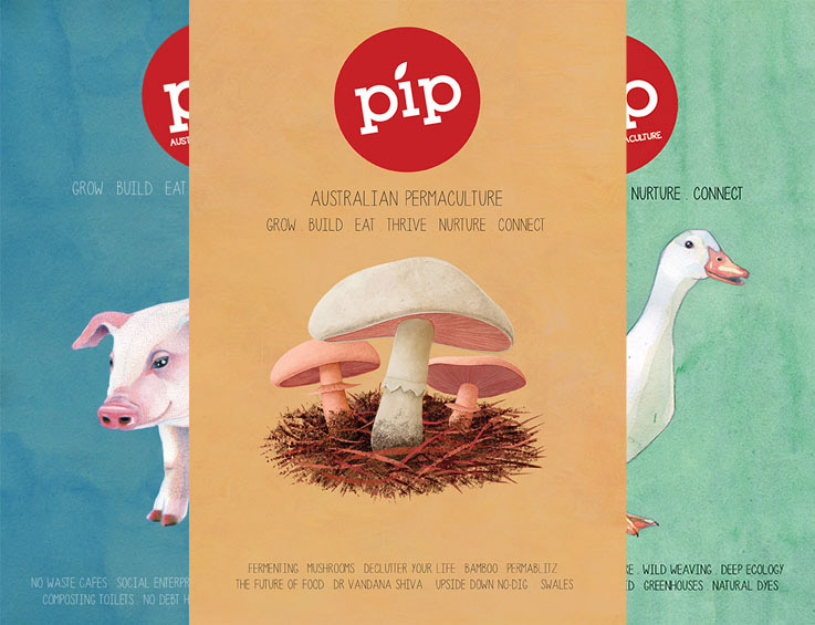pipmagazine2